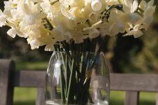 Narcis-Silver-Bouquet-DSC_0295